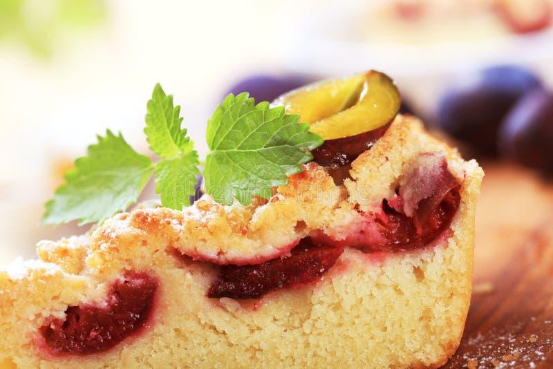 cakeplommon fotografering för bildbyråer