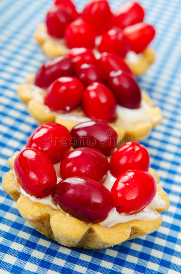 Download Cakes with cornel berries stock photo. Image of fruits - 21139734