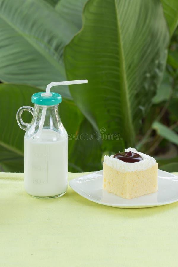 Cakk de myrtille et lait frais photo stock