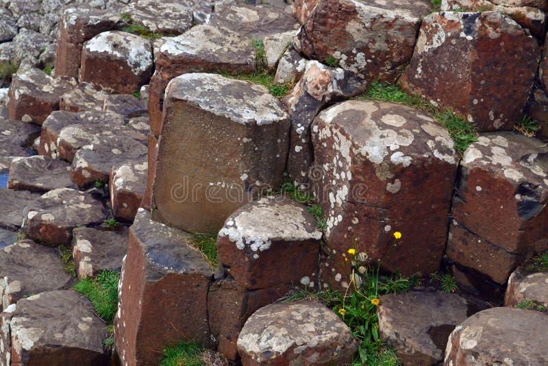 A calçada de Giants em Irlanda do Norte fotografia de stock