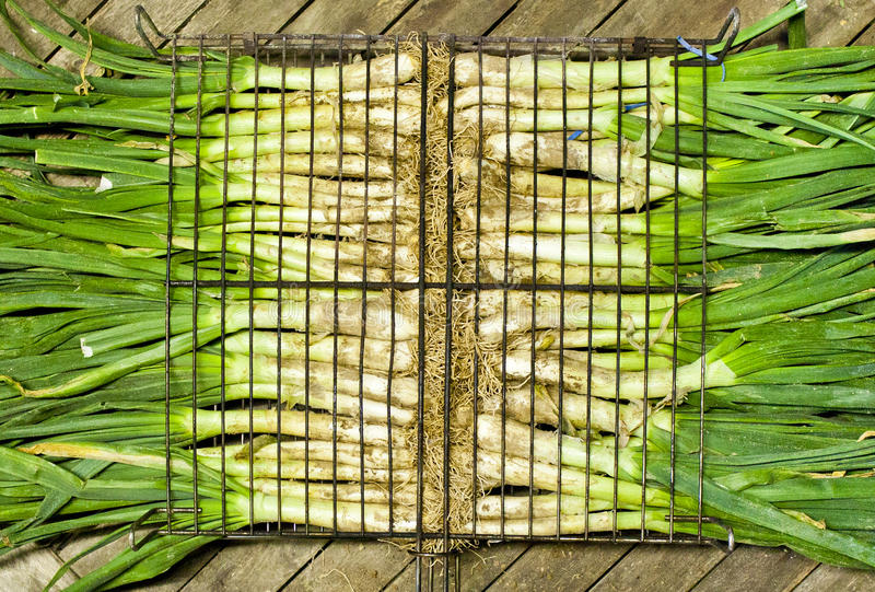 Calçots in a grill. With a wooden table stock images