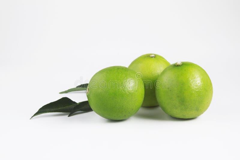 Cal de la fruta con las hojas fotografía de archivo libre de regalías