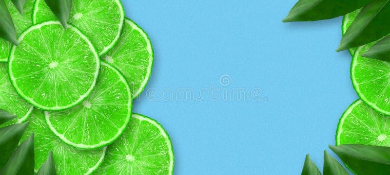 Cal jugosa cortada en un fondo azul Copie el espacio Frutas frescas Fondo de la fruta Partido del verano Cumplea?os ilustración del vector