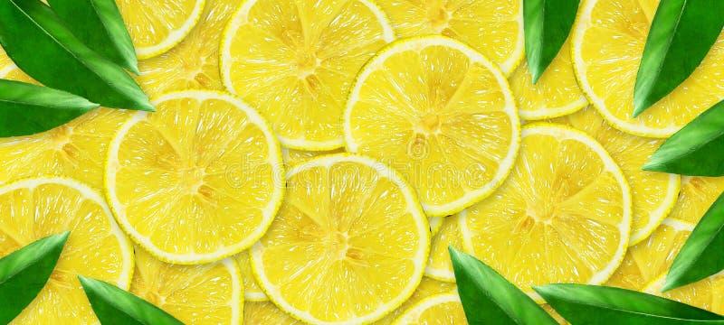 Cal jugosa cortada en un fondo gris Frutas frescas Fondo de la fruta Partido del verano Cumplea?os ilustración del vector