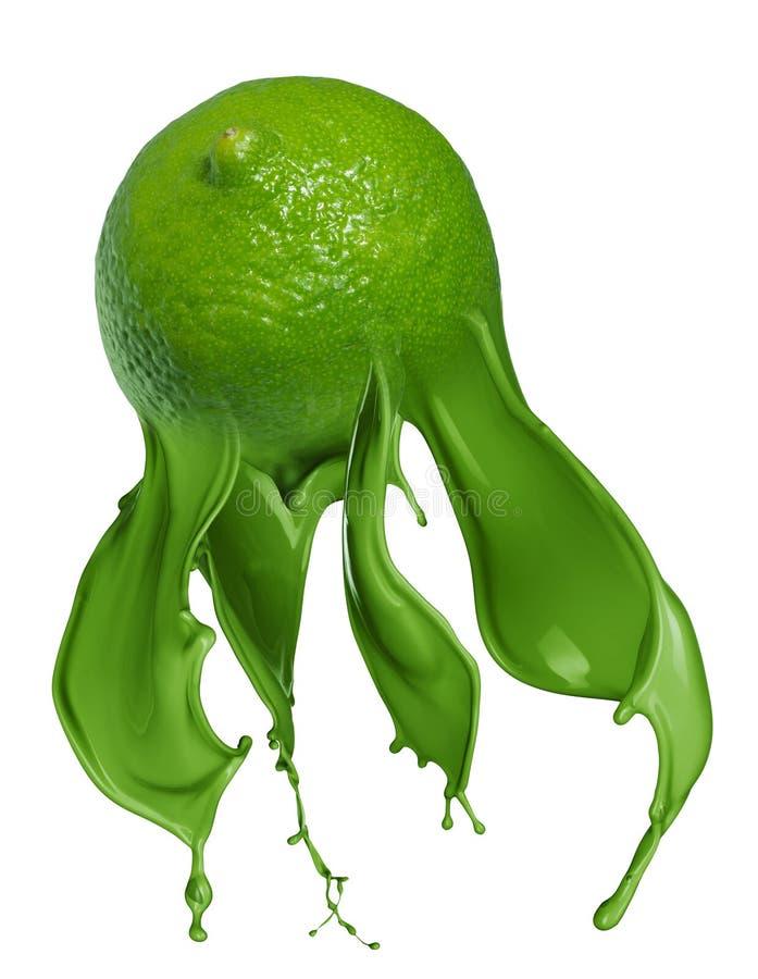 Cal verde com respingo da pintura foto de stock royalty free