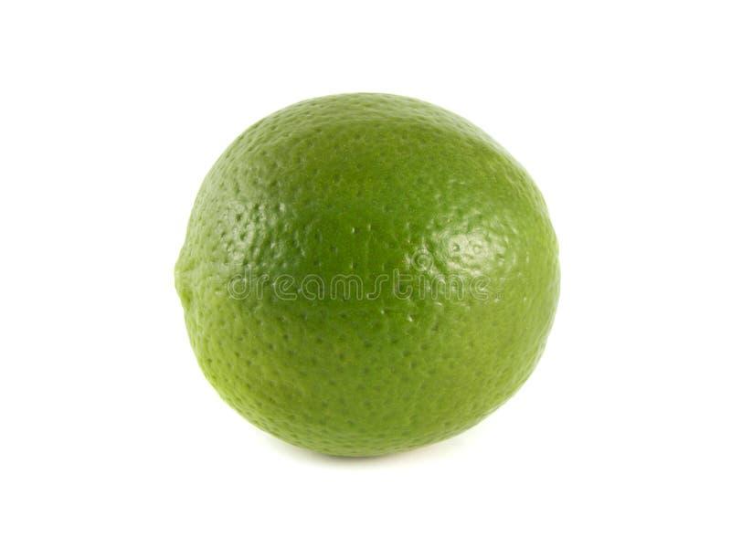 Cal verde isolado em um fundo branco fotografia de stock