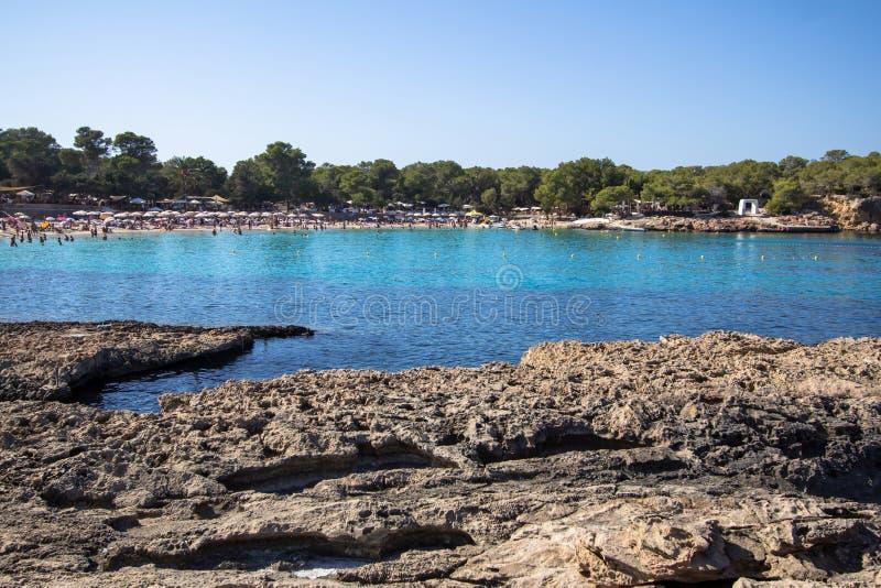 Cala Bassa, Ibiza, Spanien royaltyfri bild