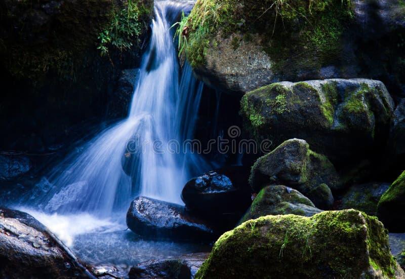 Cala con la agua corriente y la piedra foto de archivo