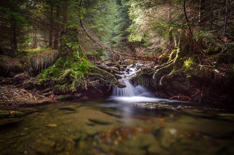 Cala con la pequeña cascada, Sumava, República Checa imagenes de archivo