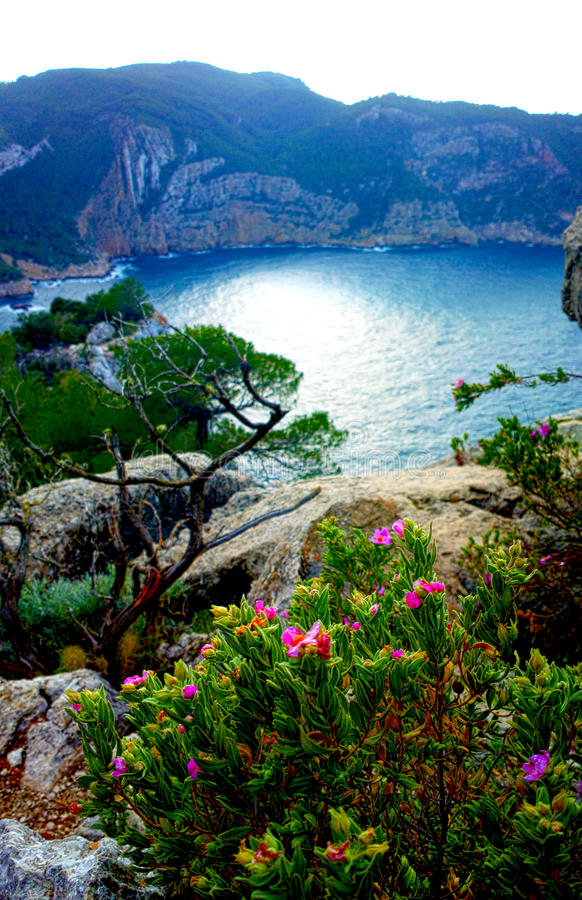 Cala Dalbarque in Ibiza winter with ocean view stock image