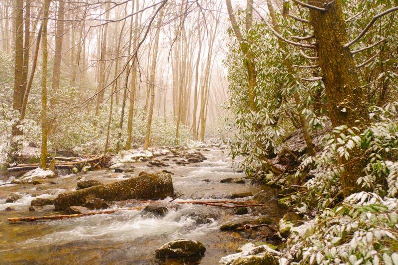 Cala de la montaña durante una tormenta de la nieve del resorte imagenes de archivo