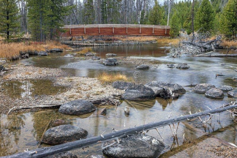 Cala de los salmones en Stanley, Idaho imagen de archivo libre de regalías