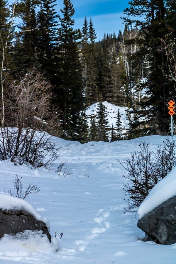 Cala de Waiprous en el invierno, zona de recreo provincial de Waiprous, Alberta, Canadá fotografía de archivo libre de regalías