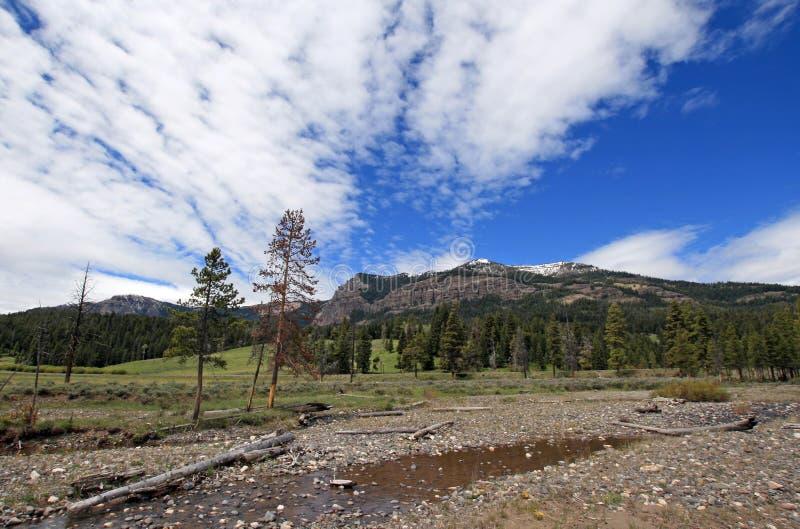 Cala del guijarro debajo de los cielos lenticulares de la nube de cúmulo en el extremo oriental de Lamar Valley en el parque naci imágenes de archivo libres de regalías