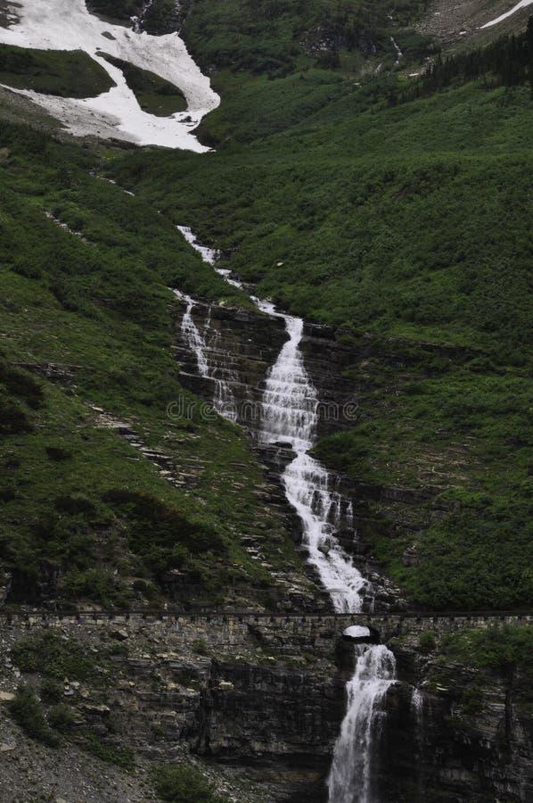 Cala del pajar en Parque Nacional Glacier imágenes de archivo libres de regalías