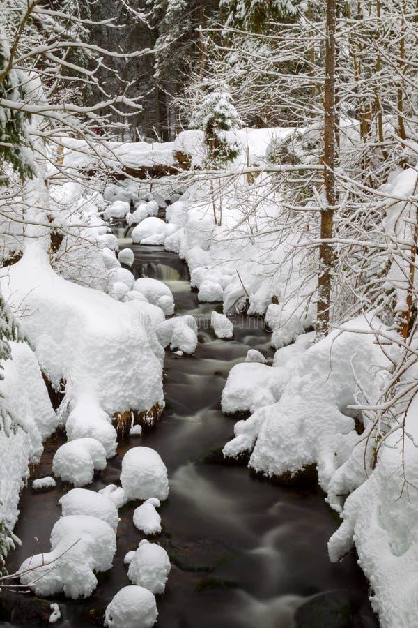 Cala en invierno imagen de archivo