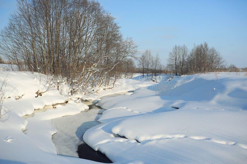 Cala en nieve foto de archivo