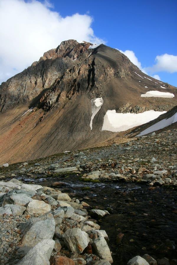 Cala fisible del pico y de la manzana Reineta imagen de archivo