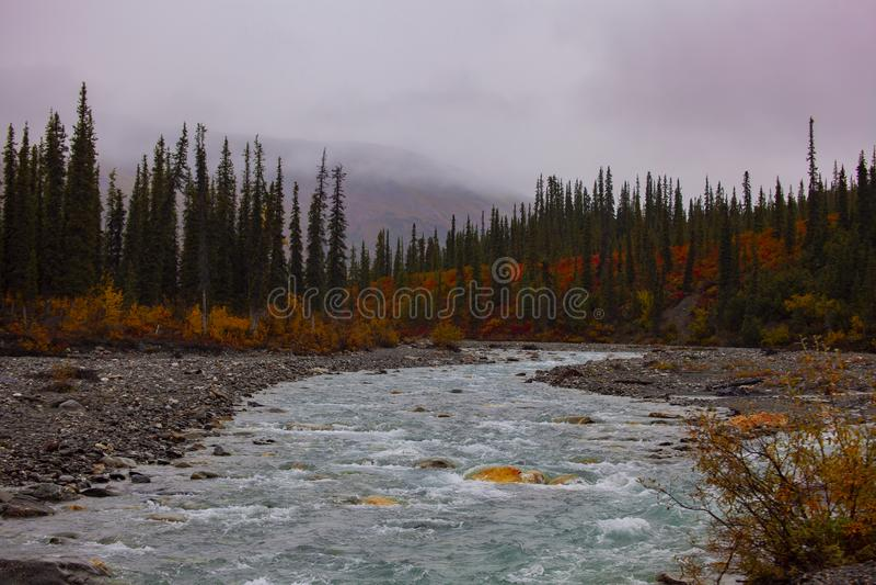 Cala hermosa en Alaska foto de archivo libre de regalías