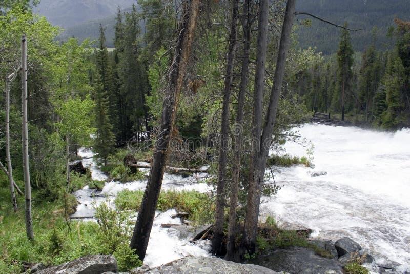 Cala loca - Wyoming foto de archivo libre de regalías