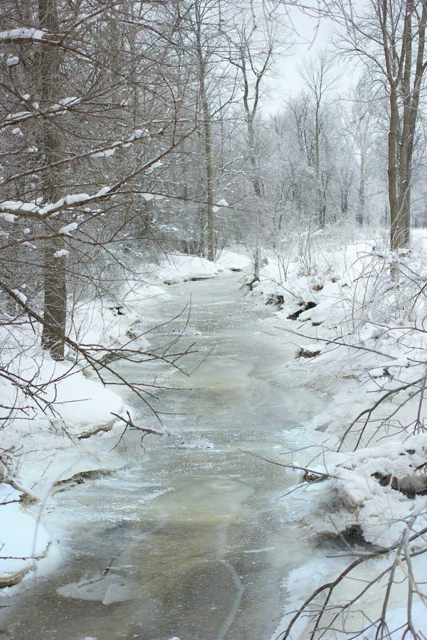 Cala Nevado que funciona con con el bosque fotografía de archivo