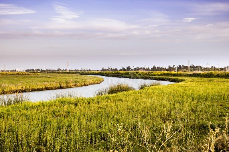 Cala que atraviesa los pantanos de la área de la Bahía de San Francisco del sur, San Jose, California foto de archivo libre de regalías