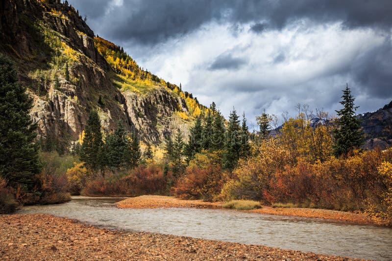Cala roja de la montaña - Colorado en otoño imágenes de archivo libres de regalías