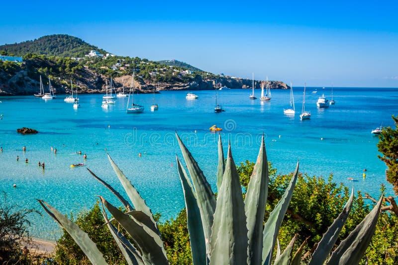 Cala Tarida en plage San Jose d'Ibiza chez Îles Baléares image stock