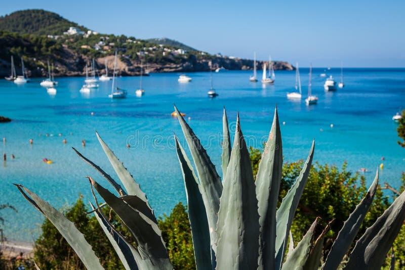 Cala Tarida in spiaggia San José di Ibiza alle Isole Baleari fotografia stock