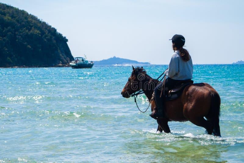 Cala Violina beach Scarlino, Maremma Tuscany, Italy. Horse riding at sunset on the beach royalty free stock image