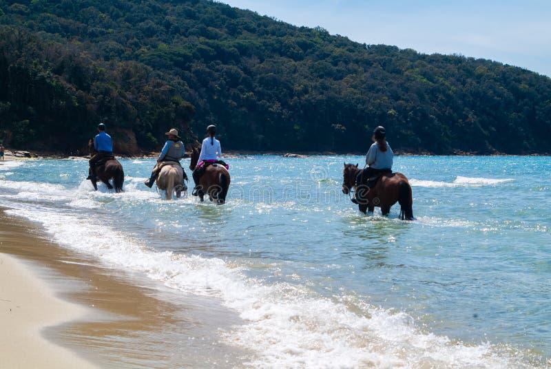 Cala Violina plaża Scarlino, Maremma Tuscany, Włochy Końska jazda przy zmierzchem na plaży fotografia royalty free