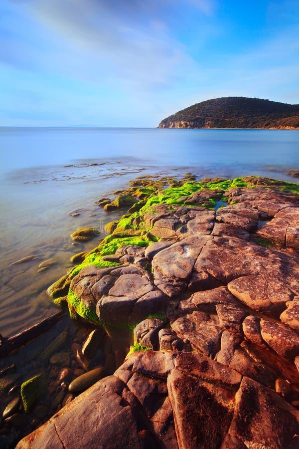 Download Cala Violina Tuscan Beach. Mediterranean Sea. Stock Image - Image: 23267003
