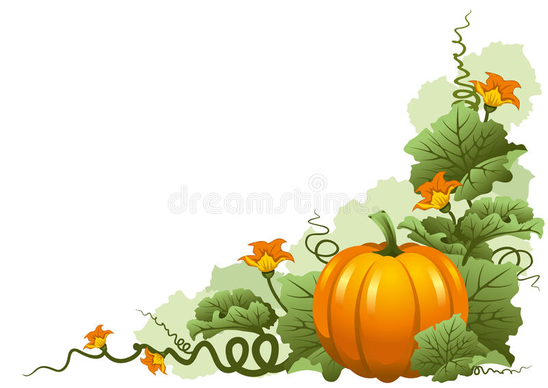 Calabaza libre illustration