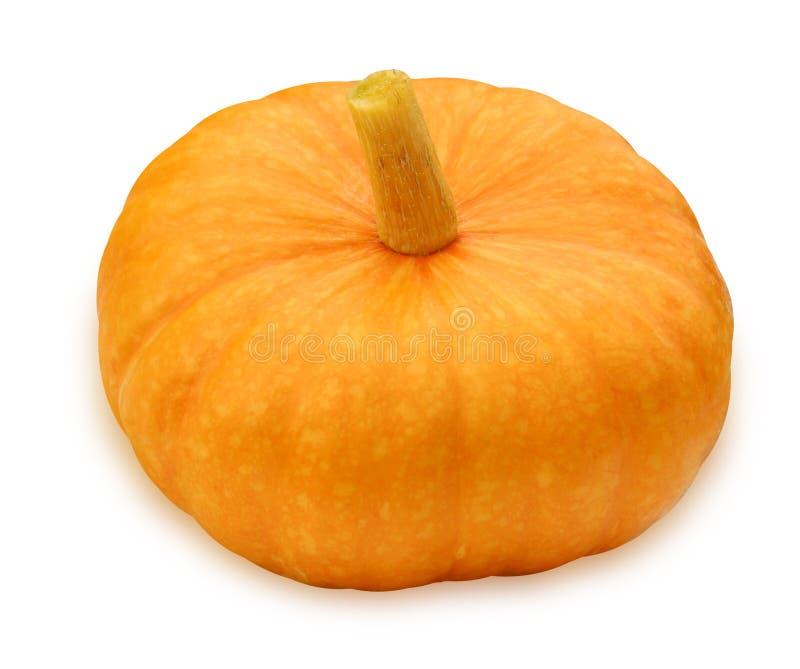 Calabaza anaranjada aislada en el fondo blanco foto de archivo