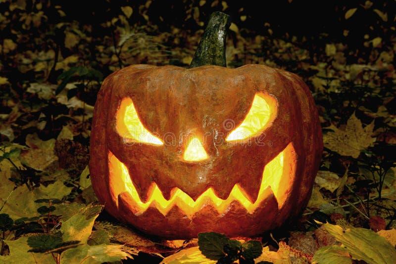 Calabaza asustadiza de Halloween en el bosque de la noche imagen de archivo