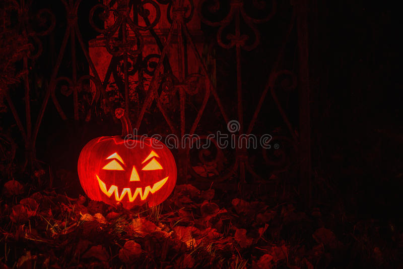 Calabaza de Halloween en Forest At Night místico fotos de archivo libres de regalías