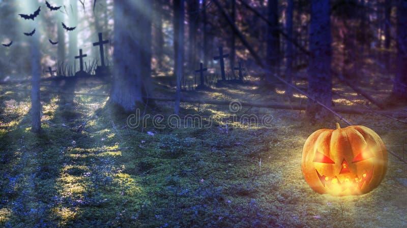 Calabaza de Halloween en Forest At Night místico Música de la noche foto de archivo libre de regalías