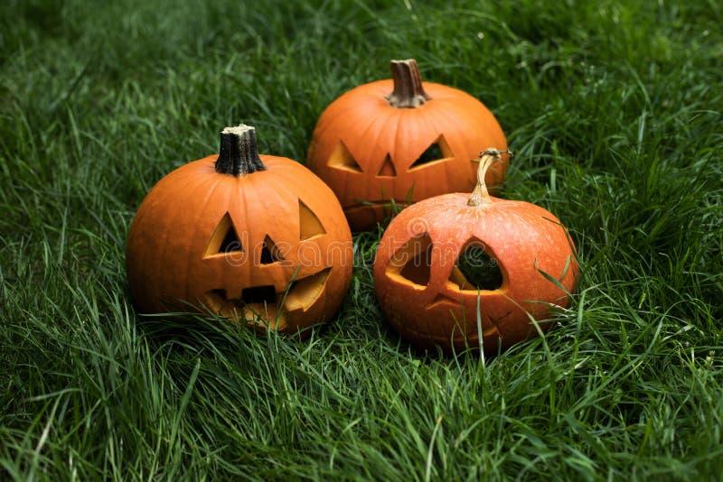 Calabaza de Halloween en hierba foto de archivo