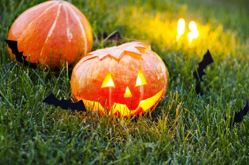 Calabaza de Halloween en la hierba en la noche imágenes de archivo libres de regalías