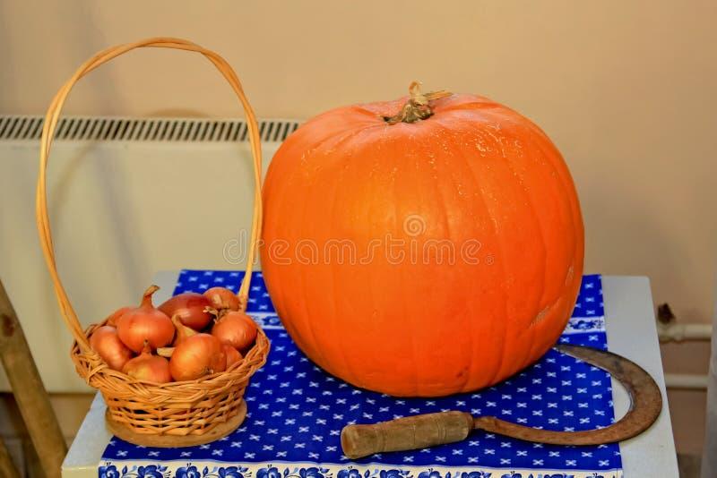 Calabaza de la composición del otoño, cebolla, hoz fotografía de archivo libre de regalías