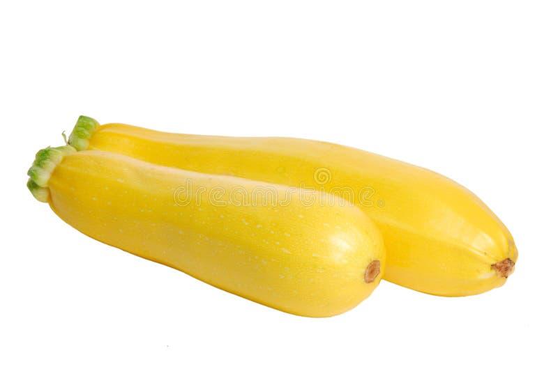Calabaza de tuétano amarilla imagen de archivo libre de regalías