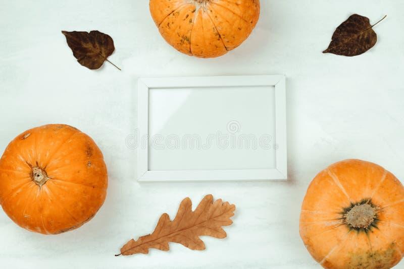 calabaza, hojas de otoño y mofa encima del marco de madera blanco imagen de archivo