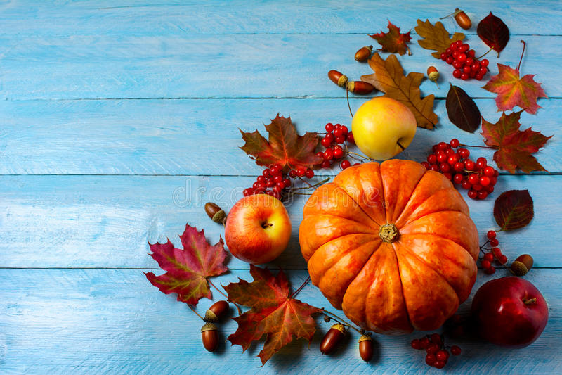 Calabaza, manzanas, bayas, bellotas y hojas de la caída en backgro azul fotografía de archivo libre de regalías