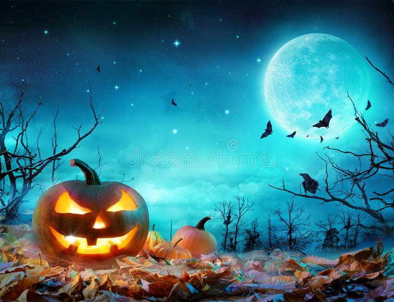 Calabaza que brilla intensamente en el claro de luna en el bosque fantasmagórico fotografía de archivo