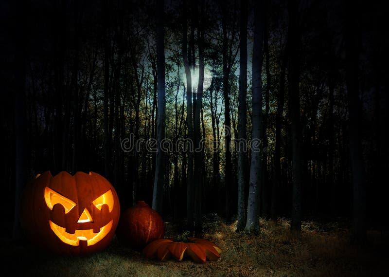 Calabaza que brilla intensamente en un bosque místico oscuro de Halloween debajo de la luna foto de archivo libre de regalías