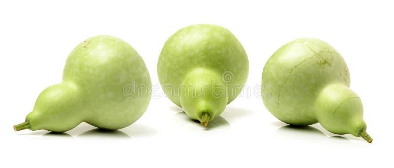 calabaza verde fresca foto de archivo