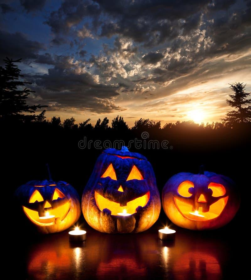 Calabazas de Halloween fotos de archivo