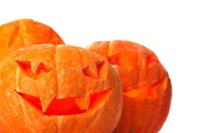 Calabazas de Halloween en blanco imagen de archivo