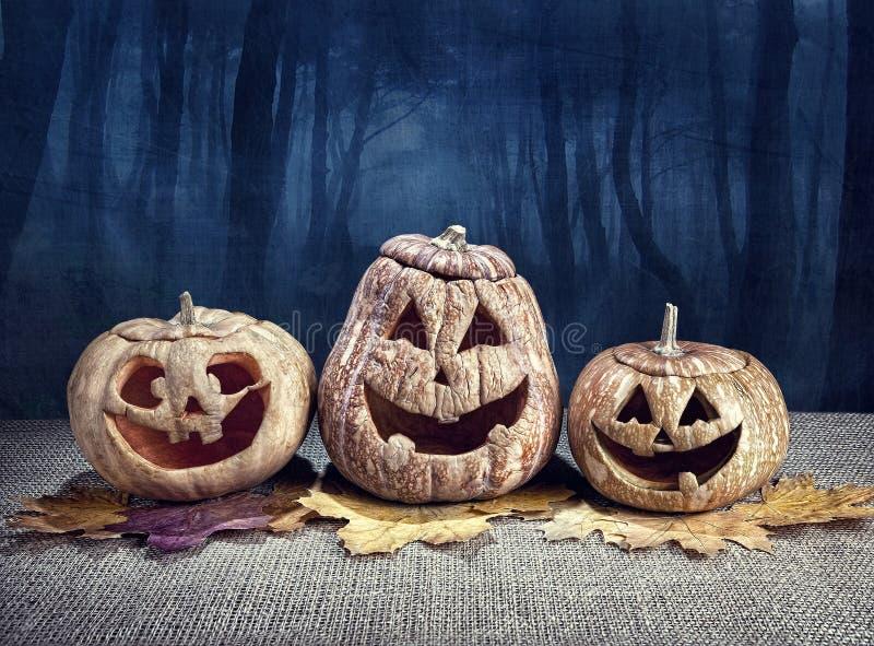 Calabazas de Halloween en el bosque imagen de archivo libre de regalías