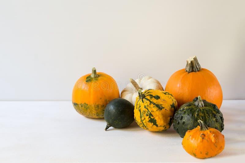 Calabazas de Halloween en los tablones blancos, decoración del día de fiesta, con el espacio de la copia imagen de archivo